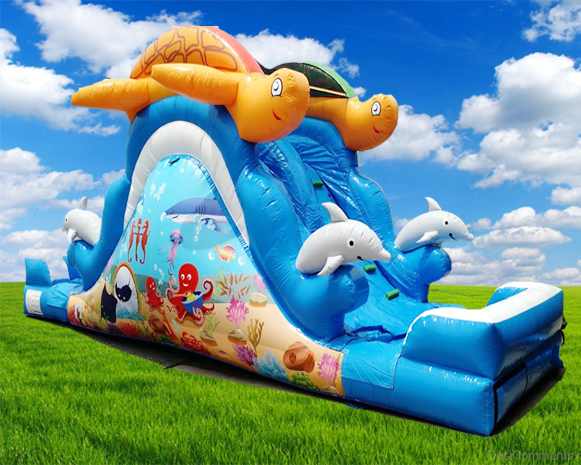 30' Double Lane Sea Splash Water Slide