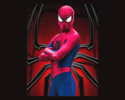 Spiderman Costume Character