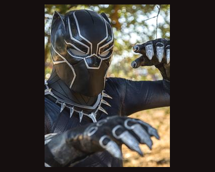Black Panther Costume Character